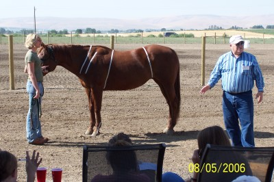 4-H Conformation Clinic