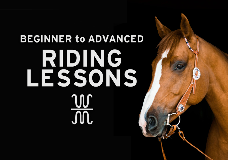 Lessons, Riding, Horses, Equitation, Horsemanship, Western, English, Trail, Jumping